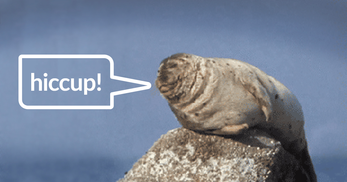 Seal saying hiccup in a speech bubble