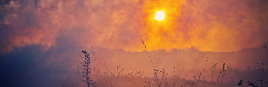 How Worsening Wildfires and Heat Waves Affect Lung Health